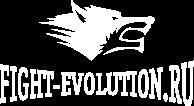 Fight-Evolution