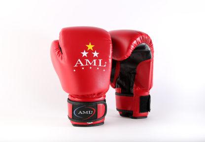 Боксерские перчатки AML STAR Красного Цвета