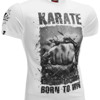 Футболка Bad Boy Karate